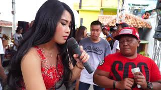 Download Laka Jodone - Anik Arnika Jaya Live Tegalsari Tegal 30 Desember 2017 Video