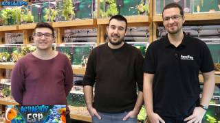 Download Pez Verde en Madrid con Amigos || Aquarium Blog y ACUARIOS ESP || AquaTips Video