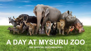 Download Mysore Zoo official documentary (HD) 'A Day at Mysuru Zoo' Video