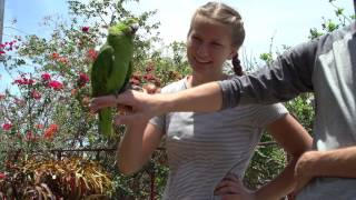 Download Nicaragua- Granada and Mombacho Video