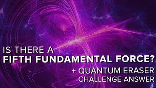 Download Is There a Fifth Fundamental Force? + Quantum Eraser Answer | Space Time | PBS Digital Studios Video