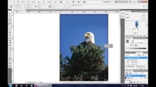 Download Diagramando Revista no InDesign 2016 Video