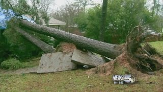 Download Storms Damage Homes and Businesses in Jackson, Alabama Video