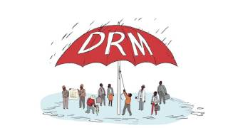 Download Building Capacity for Disaster Risk Management Video