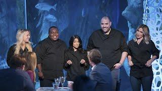 Download Shark Night Dinner Video