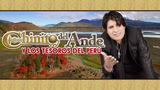 Download Chinito del Ande - Pajarillo Herido (Audio Oficial) Video