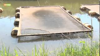 Download Smart Farm - Caged Fish Farming Video