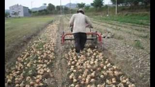 Download [대신종합농기계]양파수확기(경운기용)DS-1350[DaeShinAgricultureMachinary] Video