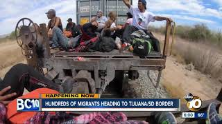 Download Hundreds of migrants heading to U.S.-Mexico border Video