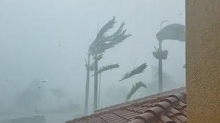 Download Hurricane IRMA Blasts Naples, Florida (2017) Video