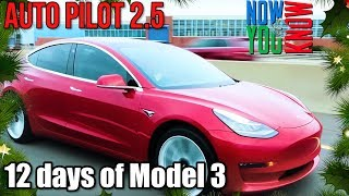 Download Autopilot 2.5! - 12 days of Model 3! Video