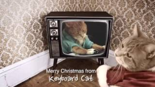 Download Keyboard Cat LOVES CHRISTMAS! Video