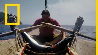 Download أساليب البقاء: النجاة في الجزر النائية | ناشونال جيوغرافيك أبوظبي Video