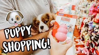 Download SHOPPING FOR OUR NEW PUPPY!! Video