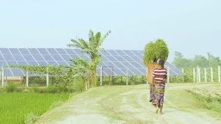 Download Clean Energy Improves Lives and Boost Business in Rural Bangladesh Video