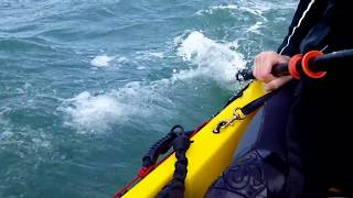 Download Homemade Kayak Sail Awesome Test.mp4 Video