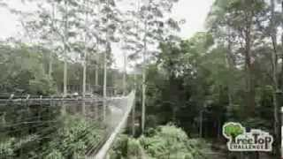 Download Ultimate Outdoor Adventure Theme Park on the Gold Coast, Queensland. Video