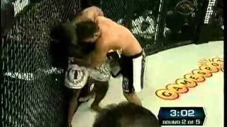 Download jake shields vs paul daley full fight Video