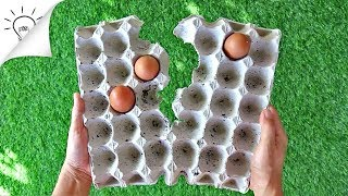 Download 8 Creative Ideas With Egg Carton Video