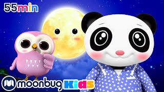 Download Bedtime Routine | And Lots More Original Songs | From LBB Junior! Video
