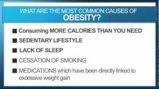 Download What Really Causes Obesity? Video