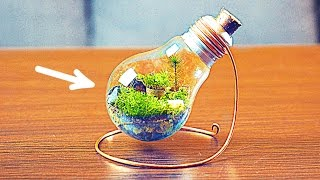 Download HOW TO MAKE AN ETERNAL TERRARIUM Video