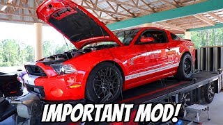 Download The GT500 Needed this + GT500 Battles FBO CTSV and Procharged Coyote Video