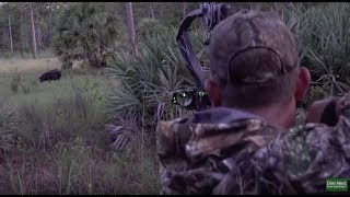 Download Monster Wild Boar Spot n' Stalk {Catch Clean Cook} Home Made Country Sausage Video