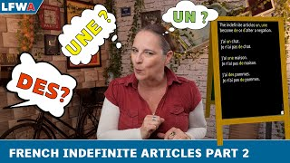 Download Practise your French indefinite articles Part 2 Video