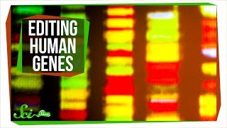 Download Editing Genes Inside the Human Body Video