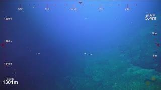 Download ROV SuBastian Dive 103- West Mata Upper East Rift - Underwater Fire Video