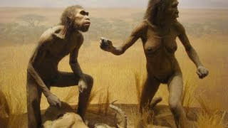 Download People Evolved From Apes Video