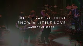 Download The Pineapple Thief - Show a Little Love (from the Where We Stood concert film) Video