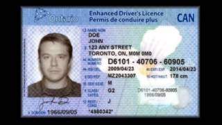 Download THE REAL TRUTH Driver s License Vs Right To Travel YouTube 2 Video