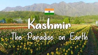 Download Kashmir family trip Video