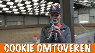 Download Paard omtoveren tot eenhoorn | PaardenpraatTV Video