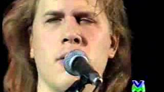 Download The Jeff Healey Band - While My Guitar Gently Weeps (live) Video