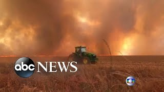 Download Record wildfires rage in Amazon rain forest l ABC News Video