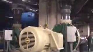 Download How The Georgia Aquarium Works Video