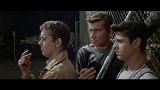 Download West Side Story - Official® Trailer [HD] Video