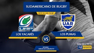 Download Yacarés vs. Argentina XV Video