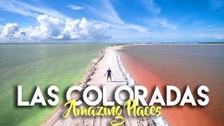 Download LAS COLORADAS YUCATAN - THE RAINBOW SALT FLATS OF MEXICO Video