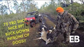 Download Deer Dog Drive (Big 8 Point Buck) Video