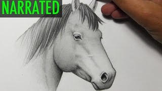 Download How to Draw a Horse [Narrated Step by Step] Video