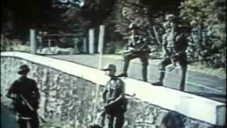 Download Fidel La Historia No Contada EEUU 2001 Documental DVDRip XviD Bravo Films Video