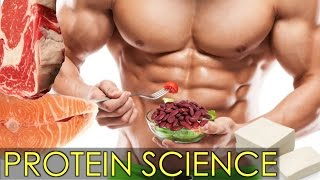 Download SCIENTIFIC ANSWER TO HOW MUCH PROTEIN YOU NEED (14 Studies) Video
