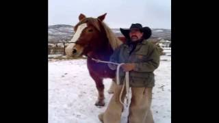 Download A Cowboy Christmas Prayer Video