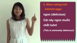 Download Vietnamese Slang and Idioms #3: How to exaggerate your feelings in Vietnamese Video
