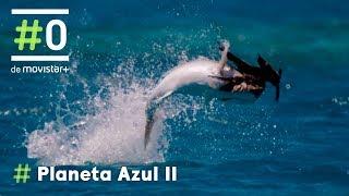 Download Planeta Azul II: La espectacular caza del Pez Jurel   #0 Video