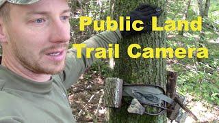 Download Trail Camera set up on Public Land over a deer scrape Video